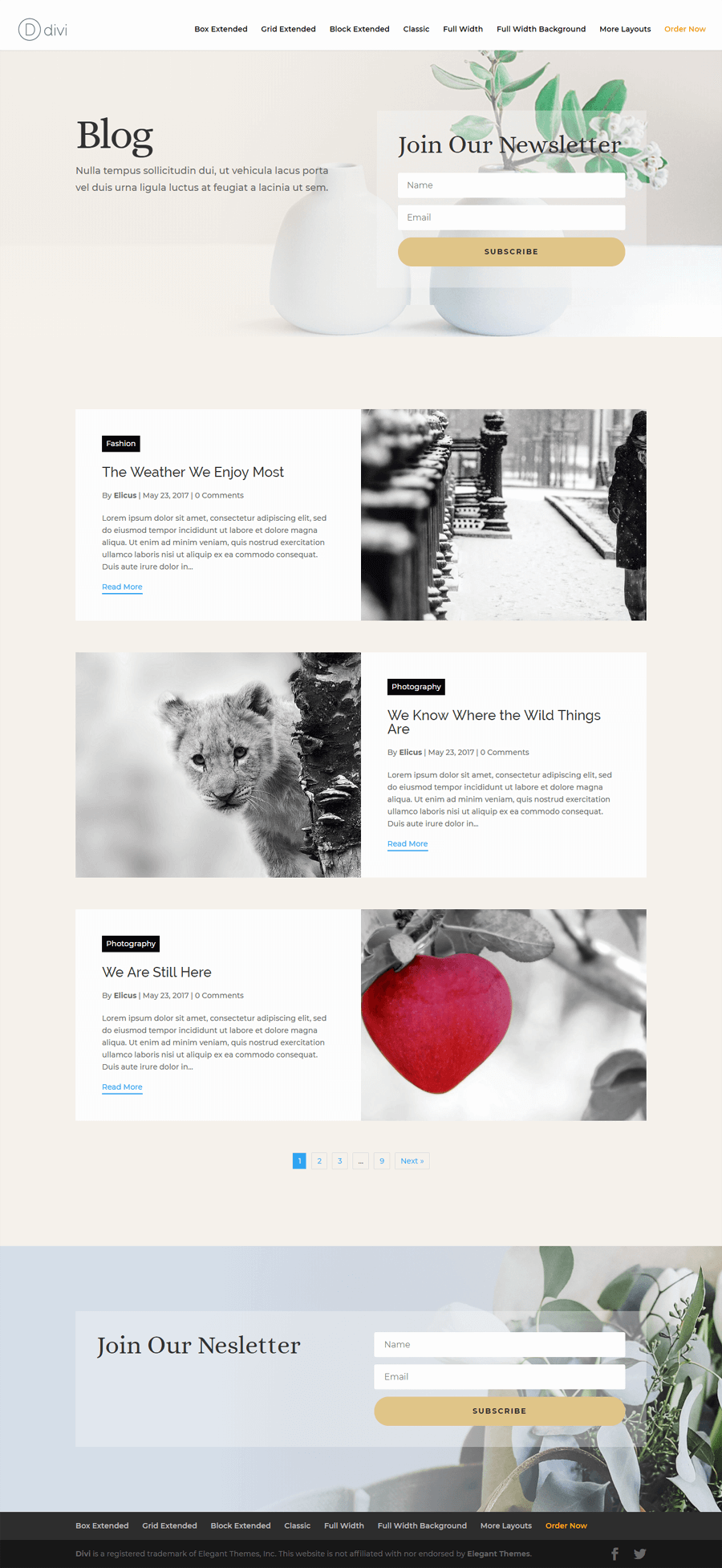 Divi blog extras front page view
