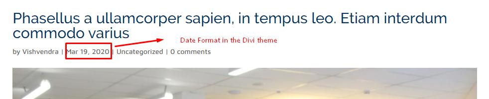 Default Divi Date Format