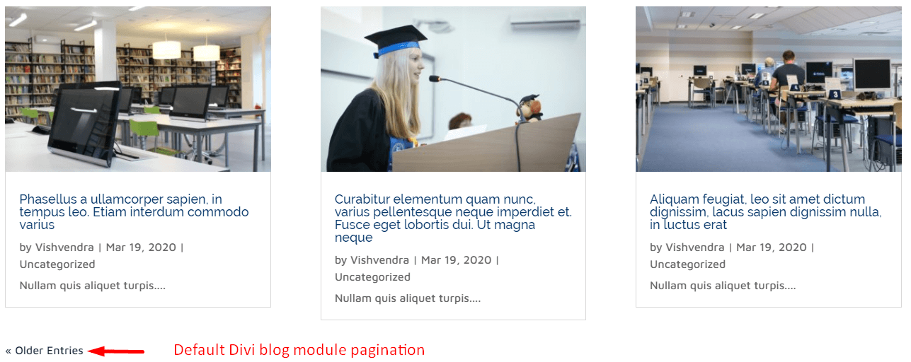 Default pagination of Divi blog module