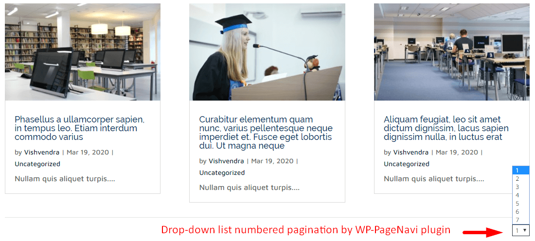 Drop-down list numbered pagination by WP-PageNavi plugin