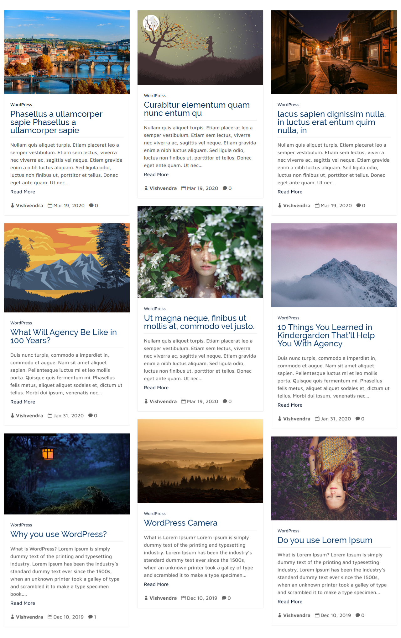 Masonry Layout Example of the Divi Blog Extras