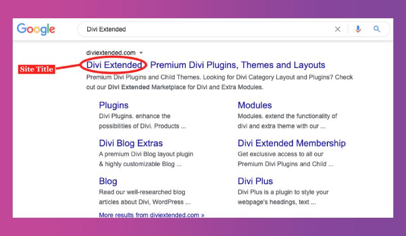 WordPress site title in Google search