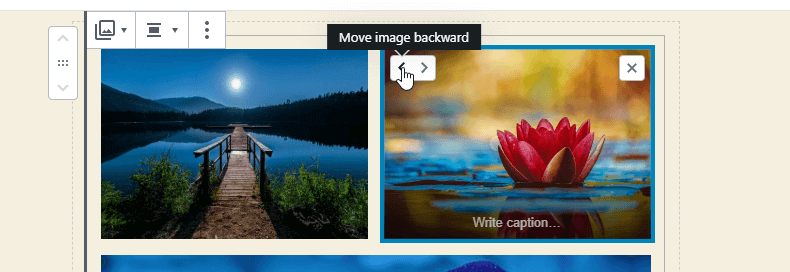 WordPress 5.3 Gutenberg Gallery image move backward