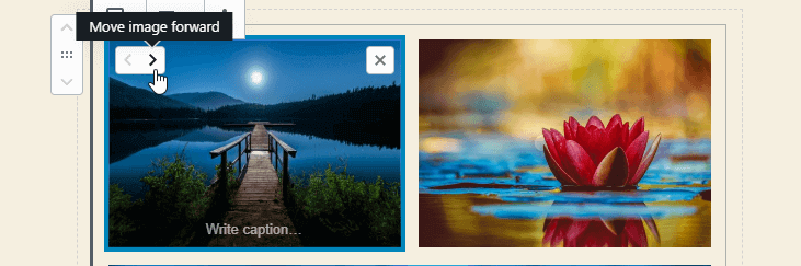 WordPress 5.3 Gutenberg Gallery image move forward