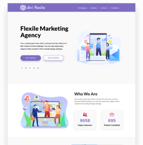 Agency homepage layout flexile