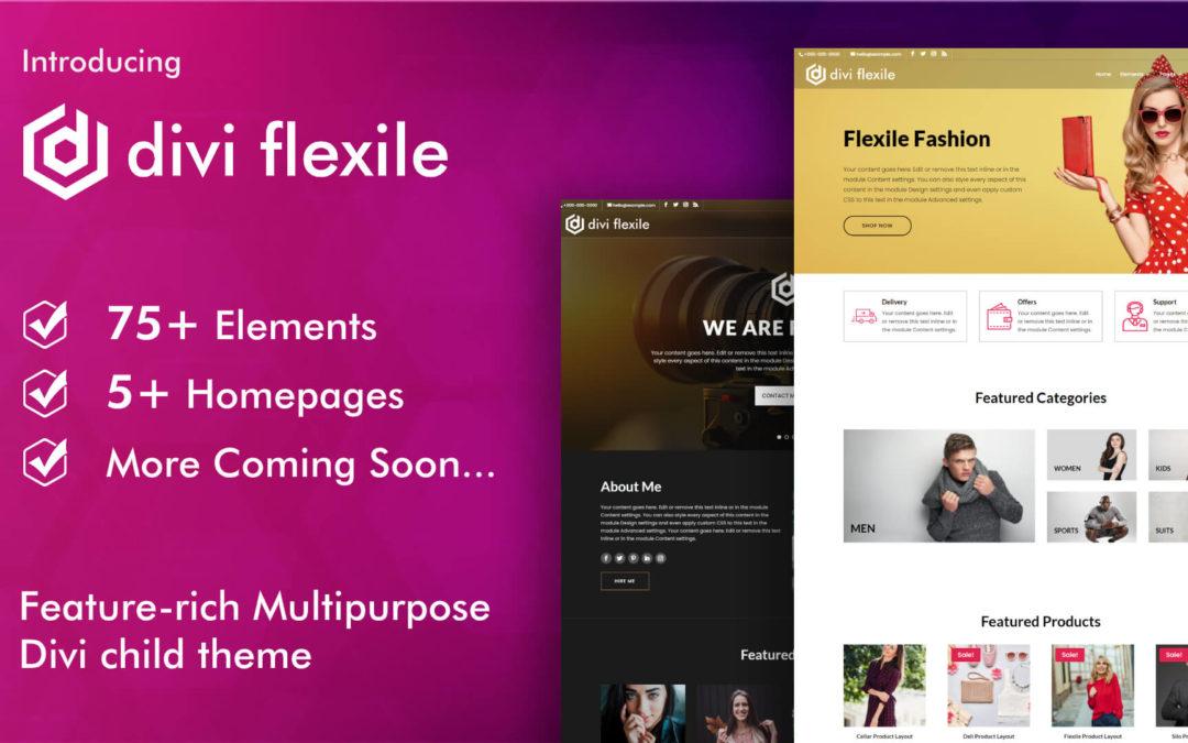 Introducing Flexile, a feature-rich multipurpose Divi child theme