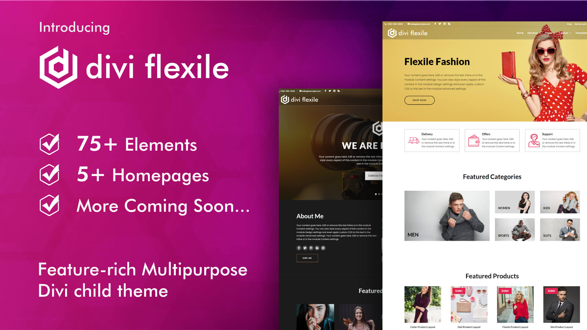 Introducing Flexile Divi child theme for multiple industries