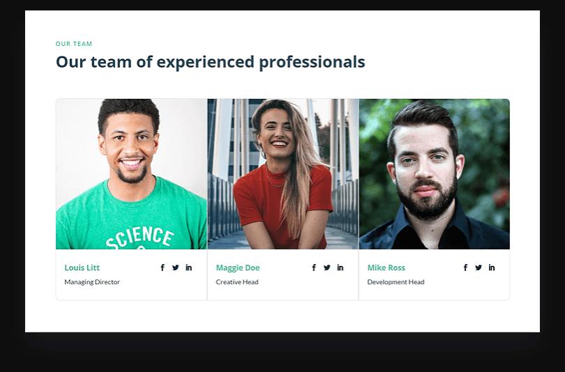 Landing Page Team Members