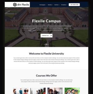 University homepage layout