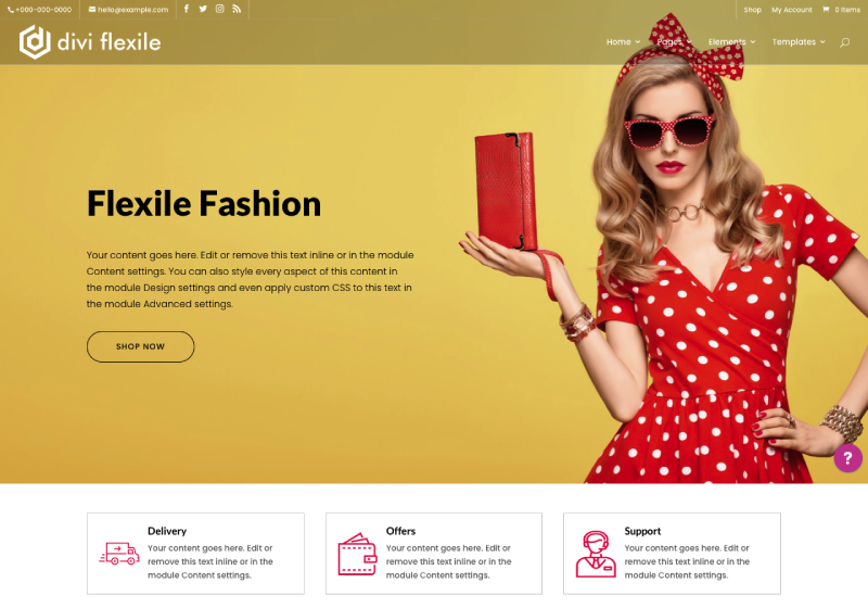 Divi Flexile Divi WooCommerce web design