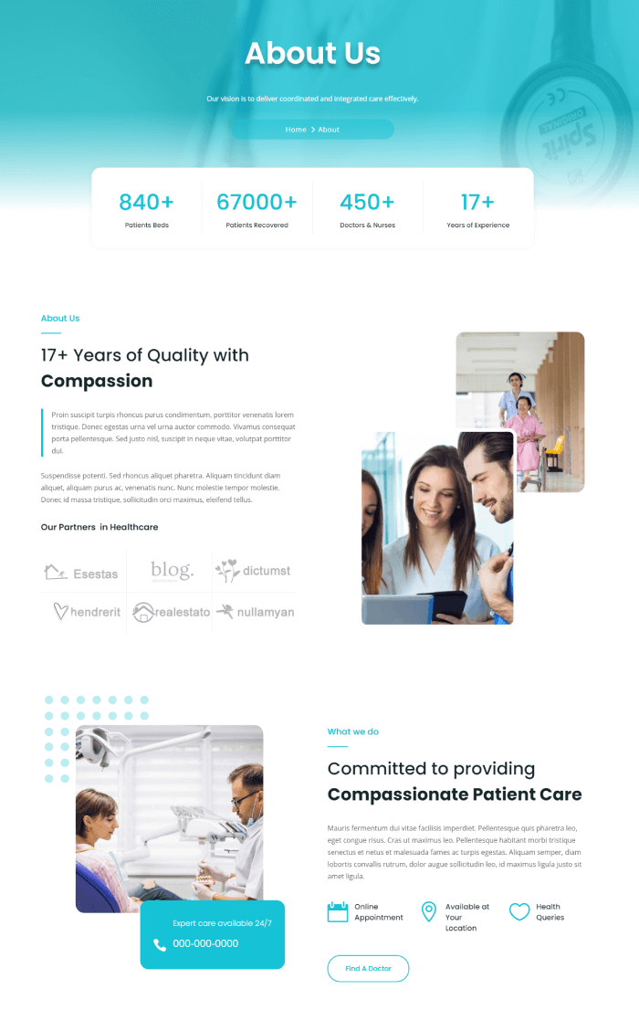 Divi Plus Medical Child theme and its about page