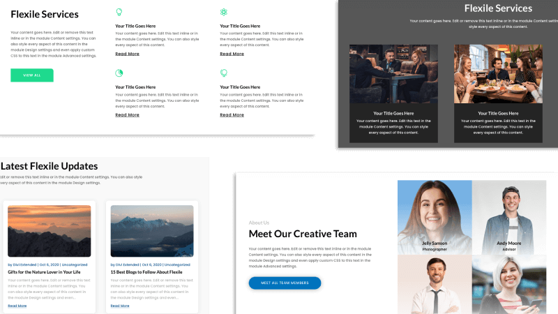 Flexile child themes different sections for Divi web design