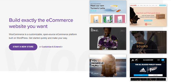 Divi WooCommerce Shop With WooCommerce and Divi