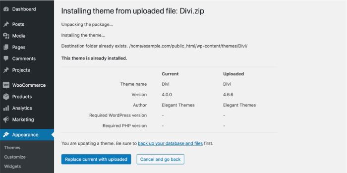 Divi theme manual update options
