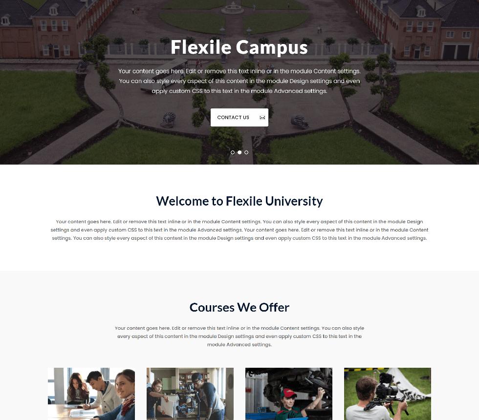 flexile-marketing-agency