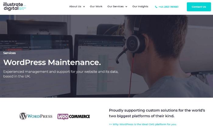 Illustrate Digital WordPress Service provider