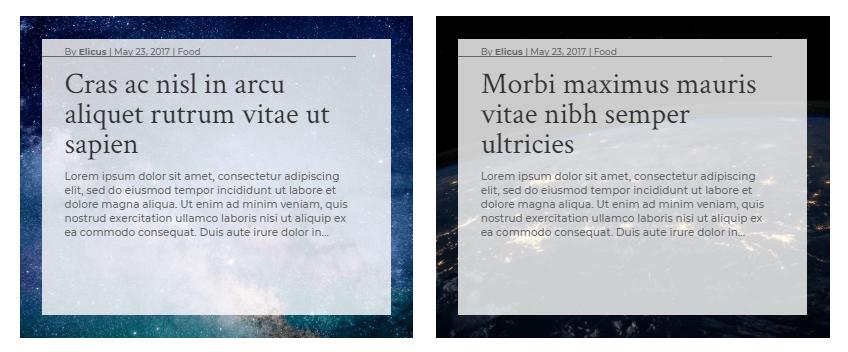 Custom full-width background layout 5