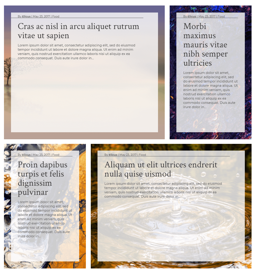 Custom full-width background layout 8