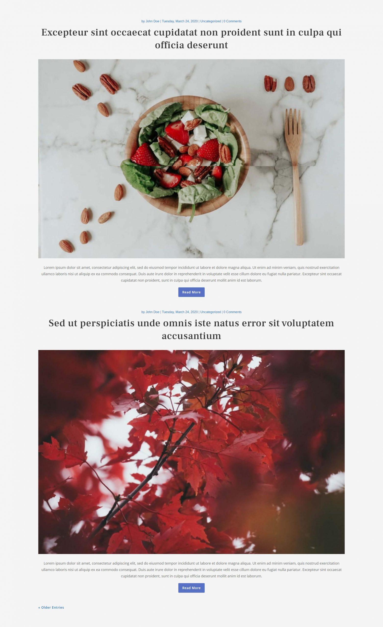 Free Divi blog layout 1
