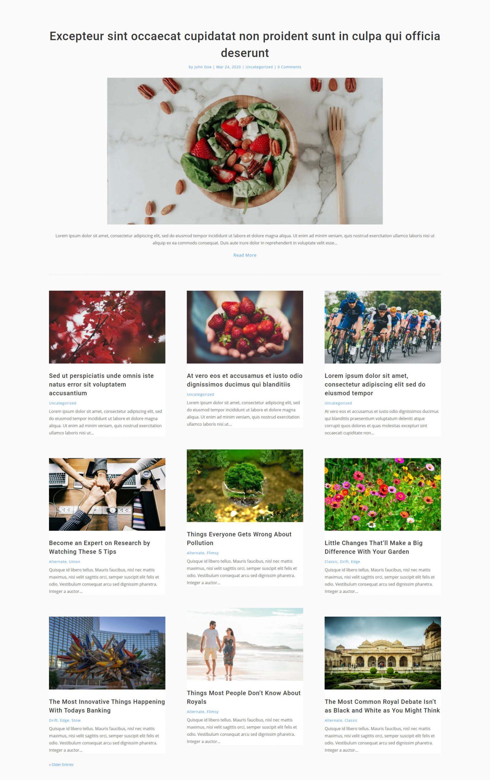 Free Divi blog layout 2