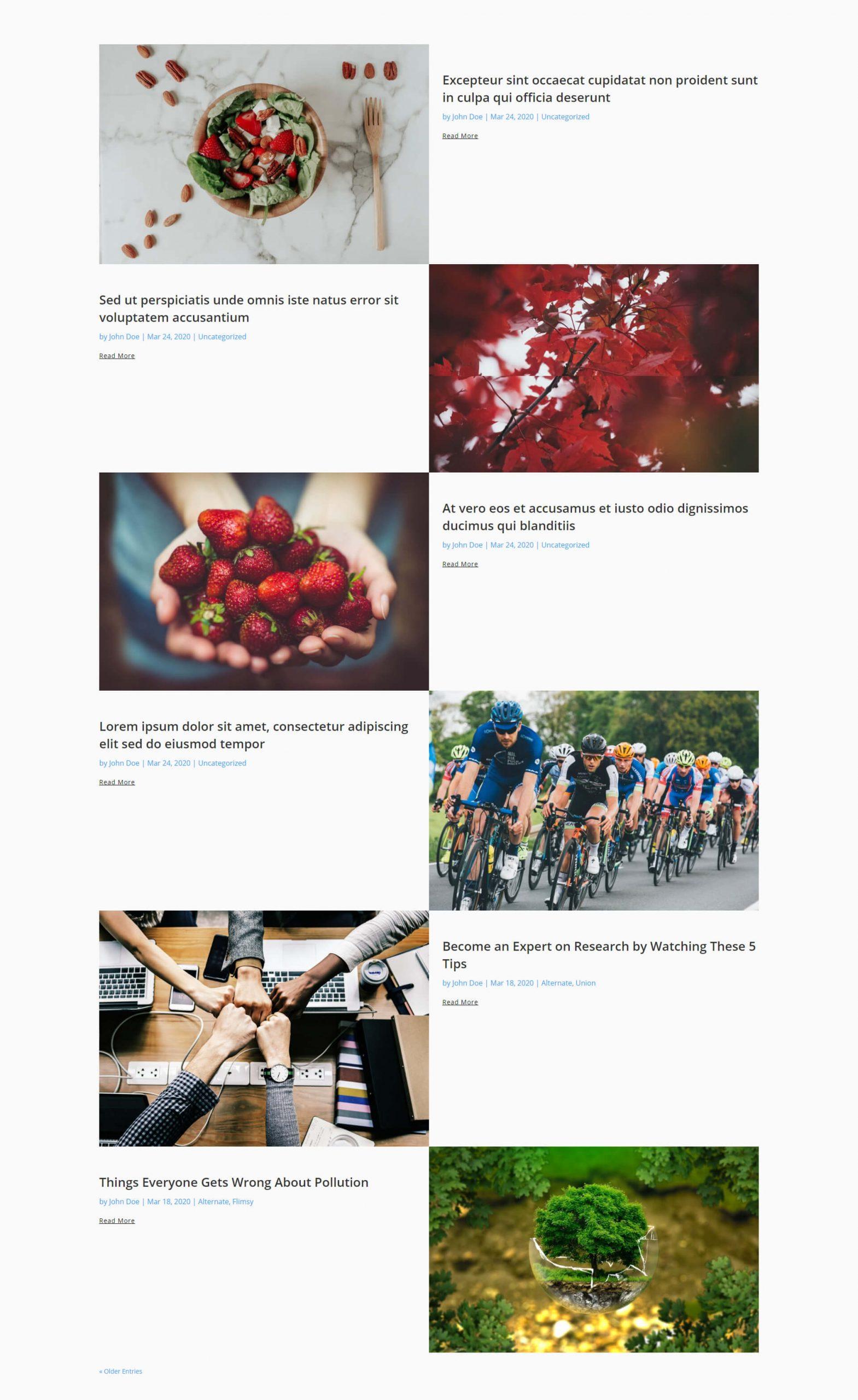 Free Divi blog layout 3