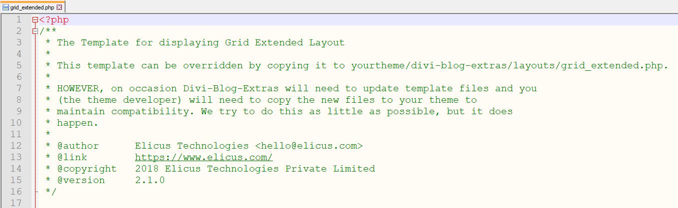 Divi Blog Extras template override