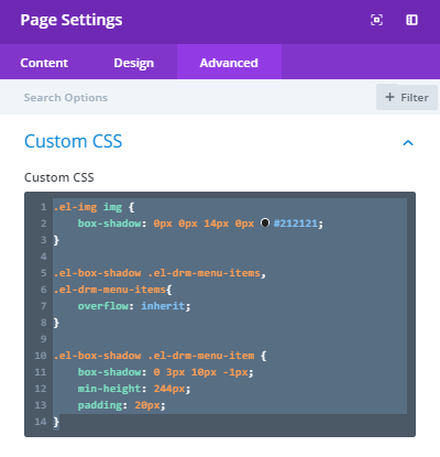 Divi Page Settings for Custom CSS